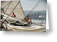 Adjusting The Sails Greeting Card