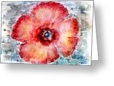 Adobe Poppy Greeting Card