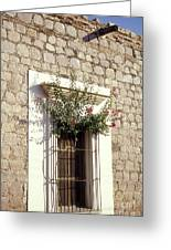 Adobe Window Copper Canyon Mexico Greeting Card