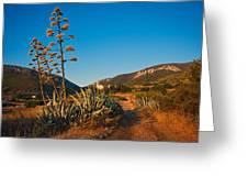 Adriatic Landscape Greeting Card
