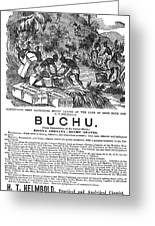 Advertisement: Buchu, 1871 Greeting Card