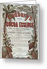 Advertisement For Cadburs Cocoa Essence From The Graphic Greeting Card