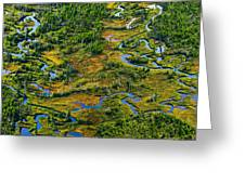 Aerial Of A Wetland, Over Northern Greeting Card