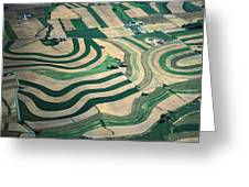 Aerial Tapestry Greeting Card by Blair Seitz