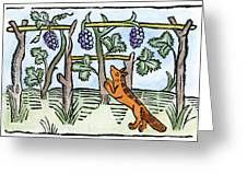 Aesop The Fox & The Grapes Greeting Card