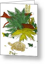 Aesop: Tortoise & The Hare Greeting Card