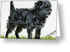 Affenpinscher Dog Greeting Card