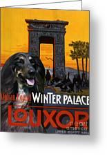 Afghan Hound Art - Luxor Poster Greeting Card