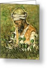 Afghani Harvest - Watercolor Greeting Card