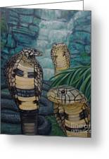 African Black Forest Cobras Greeting Card