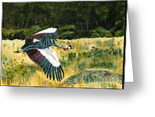 African Crowned Crane Painting Greeting Card