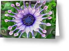 African Daisy For Van Gogh Greeting Card