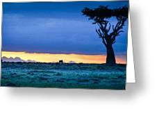 African Panoramic Sunset Landscape Greeting Card