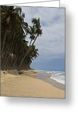 African Paradise Greeting Card