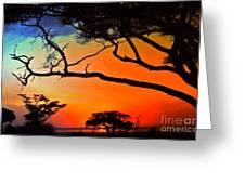 African Skies Greeting Card