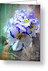 African Violet Greeting Card