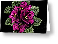 African Violets Bedazzled Greeting Card