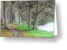 After High Tide Greeting Card