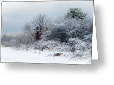 after Snow Storm Greeting Card