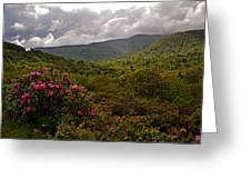 After The Storm At Graveyard Fields Greeting Card