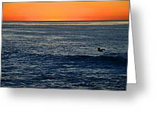 After The Sunset Glow In La Jolla Greeting Card