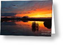 Afterglow Greeting Card
