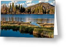 Afternoon At Sprague Lake Greeting Card