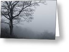 Afternoon Fog  Mono Greeting Card