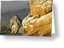 Afternoon Light On Isabella Island Greeting Card