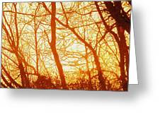 Afternoon Love  Greeting Card