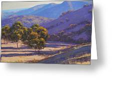 Afternoon Shadows Greeting Card by Graham Gercken
