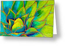 Agave Glow Greeting Card