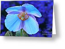 Aglow In Blue Wide View Greeting Card