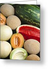 Agriculture - Mixed Melons, Watermelon Greeting Card
