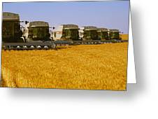 Agriculture - Six Gleaner Combines Greeting Card