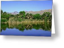 Agua Caliente Greeting Card