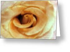 Airbrush Rose Greeting Card