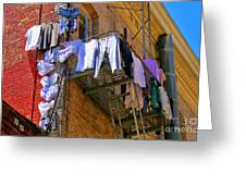 Airing Out The Drawers By Diana Sainz Greeting Card