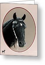 Al Zirr Portrait Greeting Card