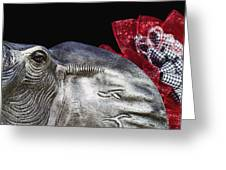 Alabama Football Mascot Greeting Card by Kathy Clark