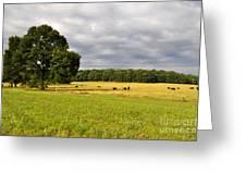 Alabama Valley Greeting Card