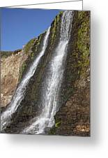 Alamere Falls Pacific Coast Greeting Card