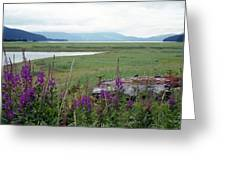 Alaska - Juneau Wetlands Greeting Card