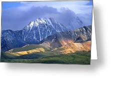 Alaska Range And Foothills Denali Greeting Card