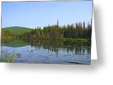 Alaska River Swamp Greeting Card
