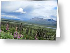 Alaska Through My Eyes Greeting Card