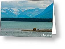 Alaskan Grizzly And Spring Cub Greeting Card