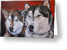 Alaskan Malamutes Greeting Card