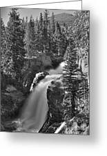 Alberta Falls In B-w Greeting Card