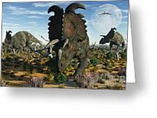 Albertaceratops Dinosaurs Grazing Greeting Card